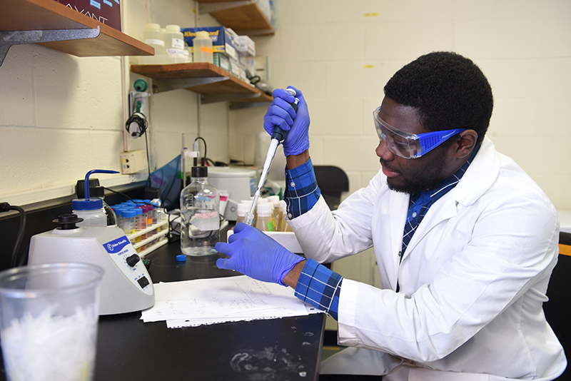 Adelphi student using a pipette in the lab