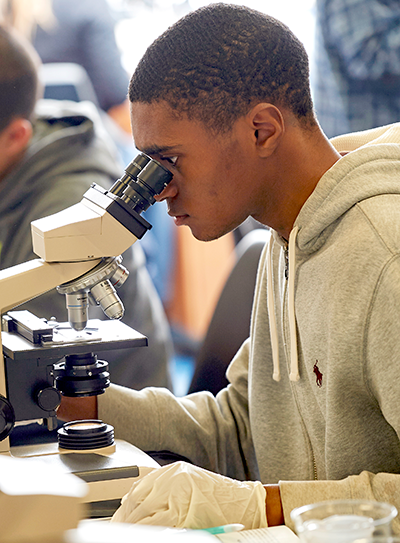 Student looks through microscope in science lab at Adelphi